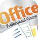 Professional Course for Microsoft Office 2010